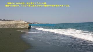 DSC_1386.jpg
