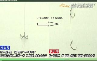 鮎 100有効性.jpg
